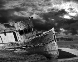 Flight of the Albatross,Digital Photography,Canon EOS T3i,Photoshop CS6,Northern California,Bryan Boutwell,Live Fiction,